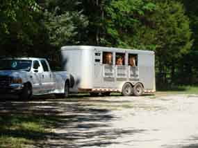 The Hwy 43 trailhead is large enough for multiple horse trailers.