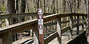 The Tupelo Trail in Mississippi is one of the four sections of National Scenic Trail in the park.