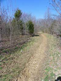 The Leipers Fork Section of the National Scenic Trail at the Tennessee Valley Divide Trailhead.