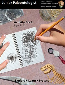Jr Paleontologist Activity Book