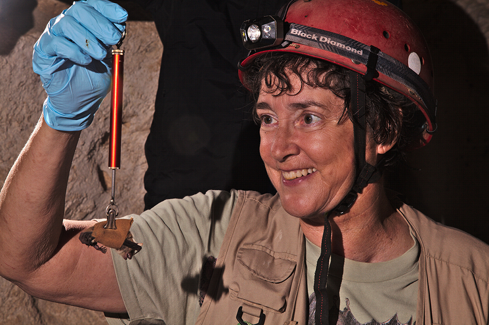 Smiling woman with short curly hair, wearing a head lamp strapped on a red hard hat with fastened chinstrap, khaki-colored vest and T-shirt. She raises her right hand wearing a light blue surgical glove and holds a metal ring from which hangs a red metal tube with a protruding bar at the base from which hangs a brown bat in a tan sling. The background behind her is black with some light pink rock illuminated behind her raised arm.