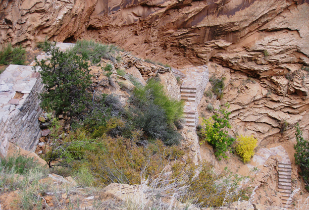 The steep stairs that make up the Aspen Trail.