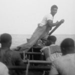 A Cape Verdean whaleboat crew rowing a whaleboat