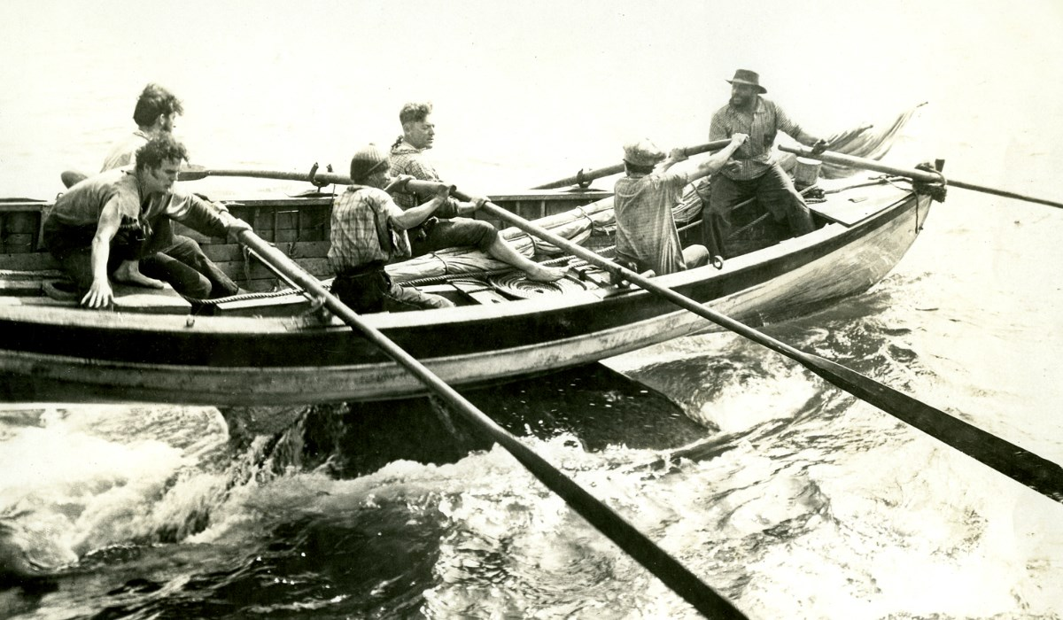 A crew balances on the rowboat as it is lifted up from the water by a whale.