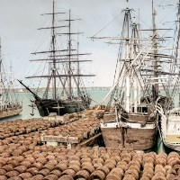 Colorized image of casks of oil unloaded from whaleships.