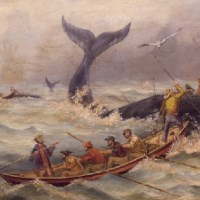 Men in a rowboat try to harpoon a whale on the open ocean.