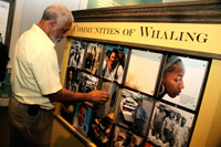 A visitor spins an interactive panel in the Communities of Whaling exhibit