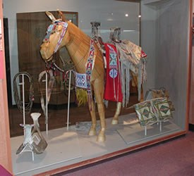 A museum exhibit of a Nez Perce horse wearing traditional accessories.