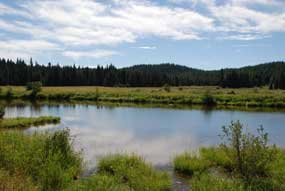 Musselshell Meadows, Idaho