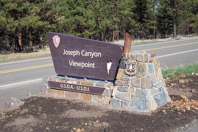 A dark brown sign with the words Joseph Canyon Viewpoint on it and the National Park Service and Forest Service logos