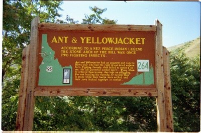 A brown interpretive sign with the words 'Ant and Yellowjacket' on it.