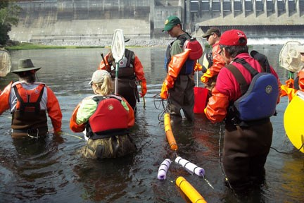 LTEMS volunteers working in the river