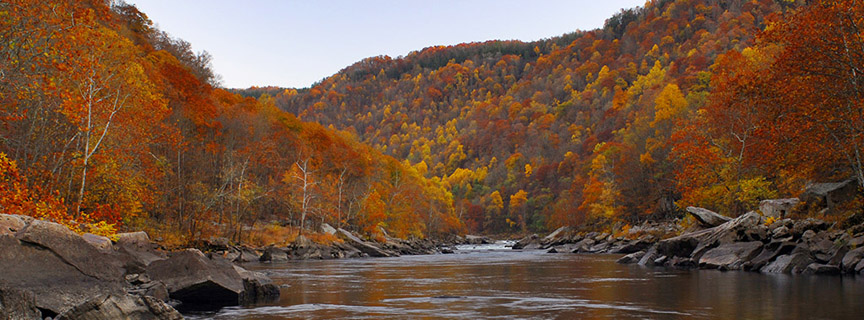 river with fall colors
