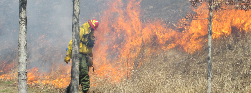 firefighter in front of grass fire