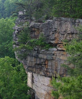 Sandstone cliff on rim of gorge