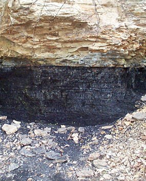 Exposed coal seam along a park trail within the gorge.