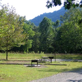 campsite with trees and mountain in background