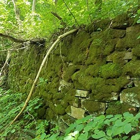 old moss covered stone wall