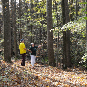 hikers looking at hemlock trees