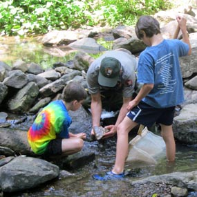 students with a ranger examining aquatic organisms
