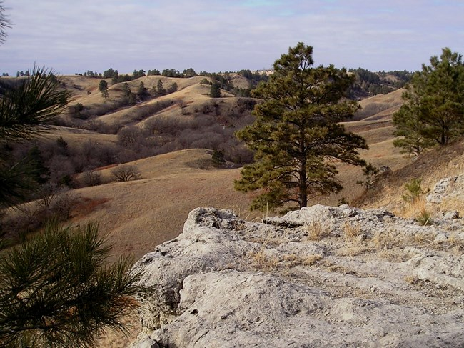 A knobby, sandstone gray rock is in the foreground of a photo with a landscape of river valleys and prairie in the background.