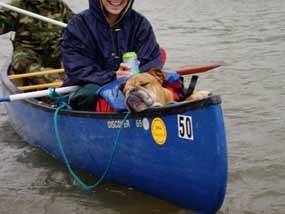 Dog in Canoe