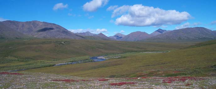 image of tundra and mountains, without littered fuel pods