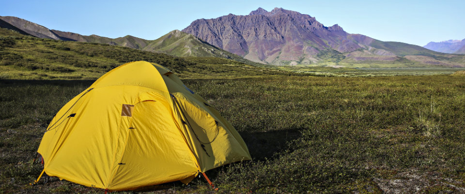 yellow tent on green grass in front on mountains & Backpacking/Camping - Noatak National Preserve (U.S. National Park ...