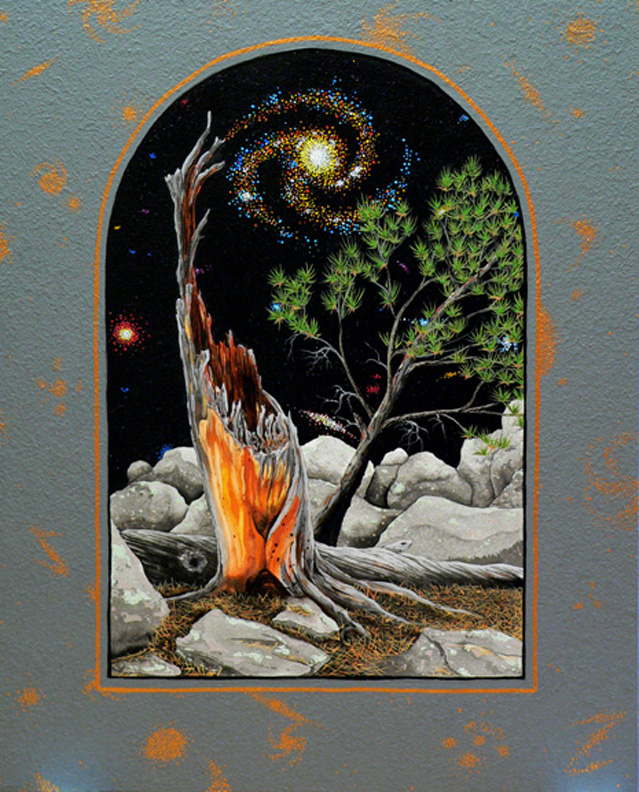 pine & galaxies - Part of the Sentient Landscapes series by 2010 Artist-in-Residence Mark McGinnish.