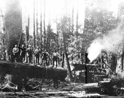 1915 Logging Operation Skagit River near Concrete