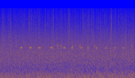 Spectrogram of a barred owl hooting. Image Credit: NPS/NOCA
