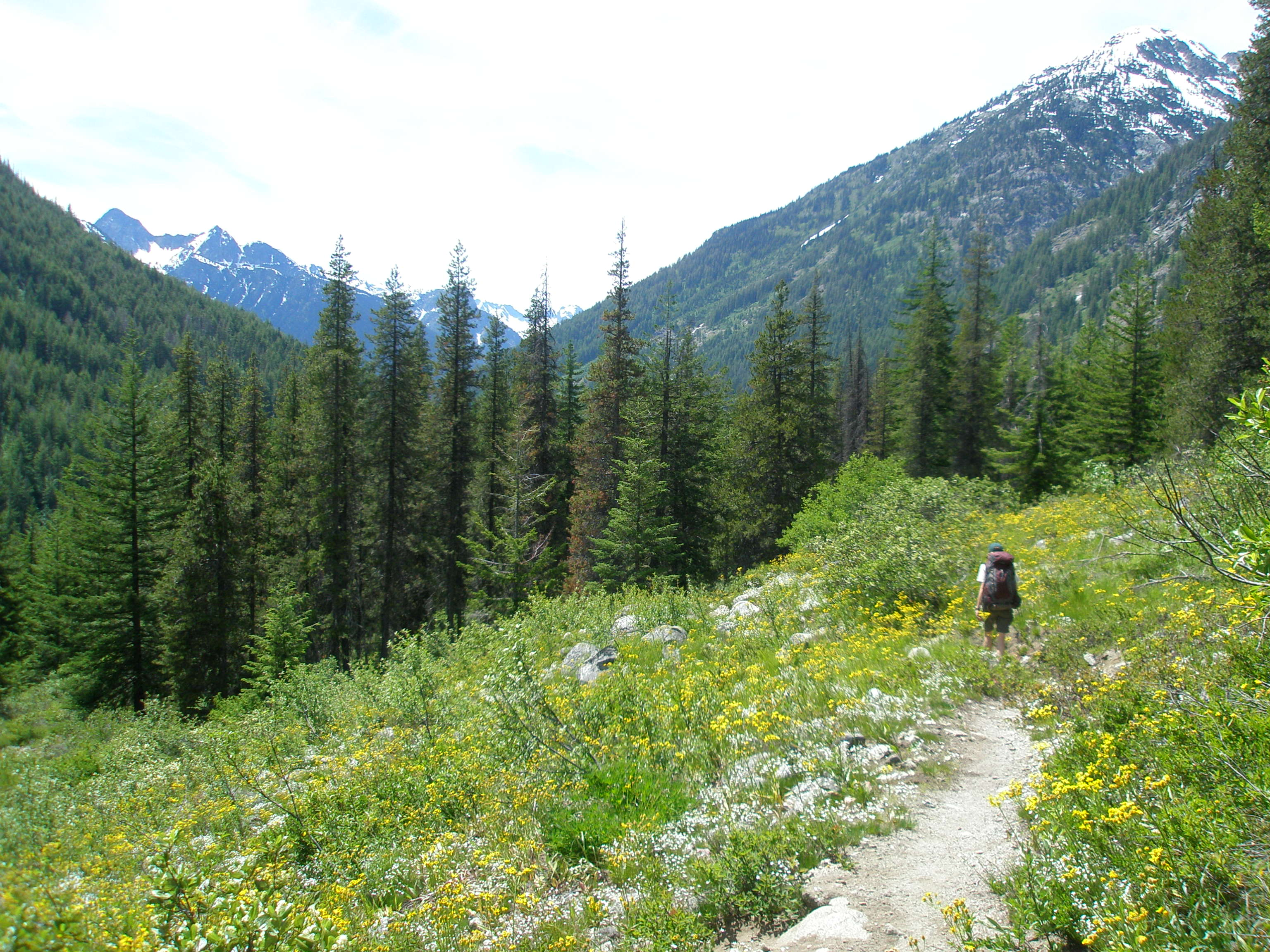 Bridge Creek (Pacific Crest) Trail