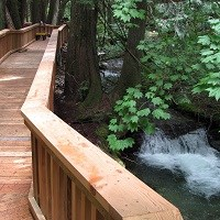 A boardwalk along a cascading creek