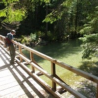 A hiker stands on a bridge over a creek.