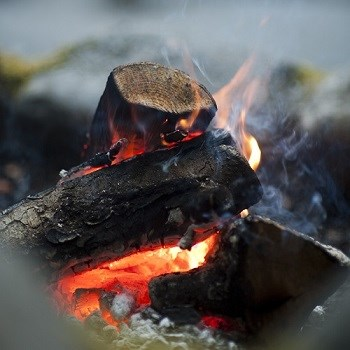 Close-up of burning campfire