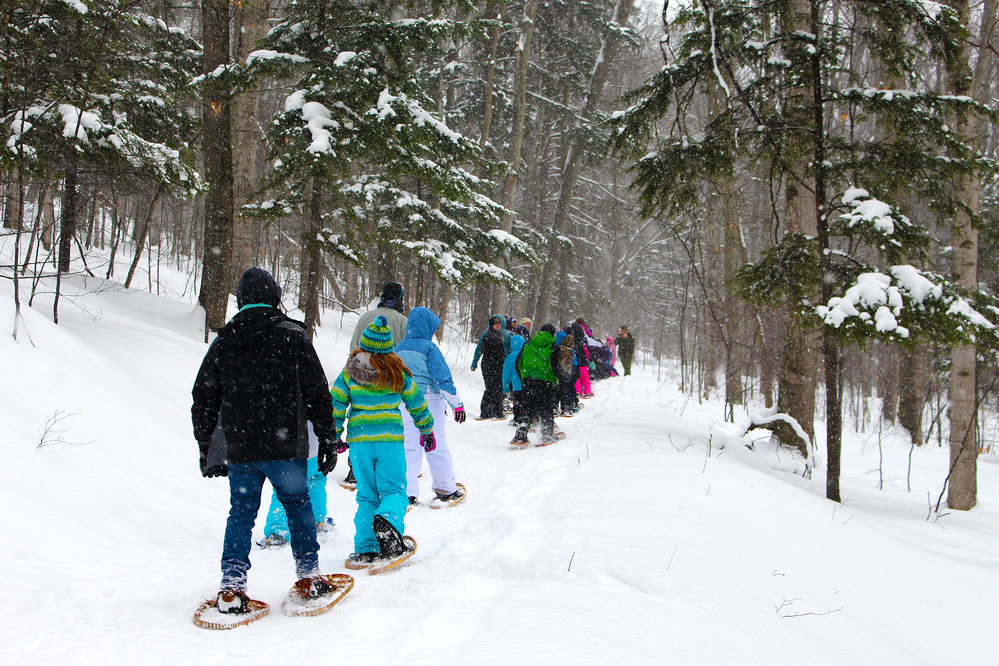 A snowshoeing school group following a park ranger through the woods