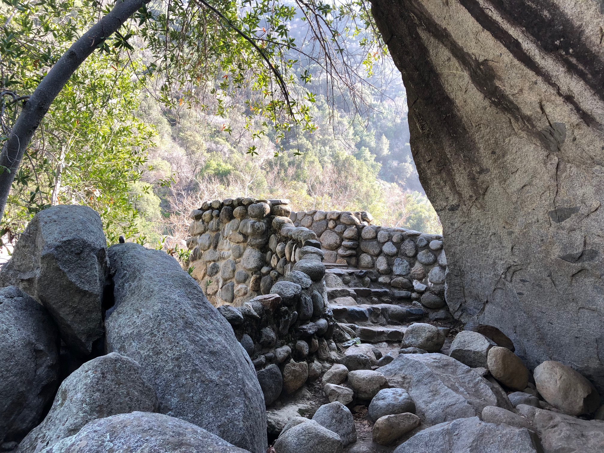 Wedding Locations Sequoia Kings Canyon National Parks