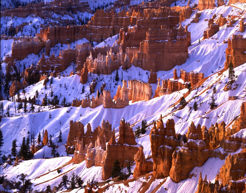 Bryce Amphitheater and hoodoos with covering of snow