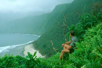 The sea cliffs of Lata Mountain on Ta'u are among the world's tallest.