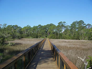 From this boardwalk, visitors can look across the marshy landscape where the ruins of Fort Mose Site lay.