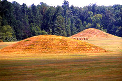 Pharr Mounds 7 | Wandering through Time and Place