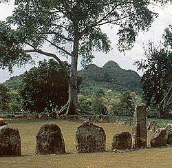 Caguana Ceremonial Site - Attraction - Carretera 111, Utuado, undefined, 00641