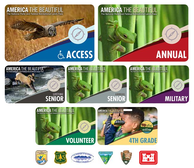 multi-colored passes with photos of wildlife and a child