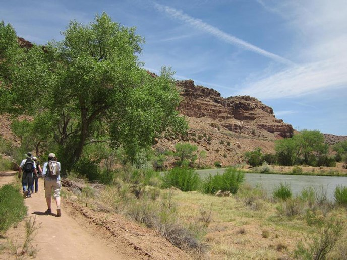 people on trail beside river with cottonwood in the foreground and crumbly cliffs in the background