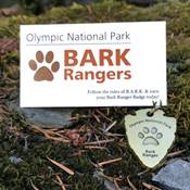 Bark Ranger card and badge