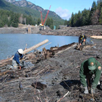 Park rangers and Washington Conservation Corps crews work on planting native plants with Glines Canyon Dam removal ongoing behind them.