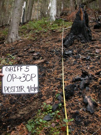 Composite burn index plot on the Griff Fire