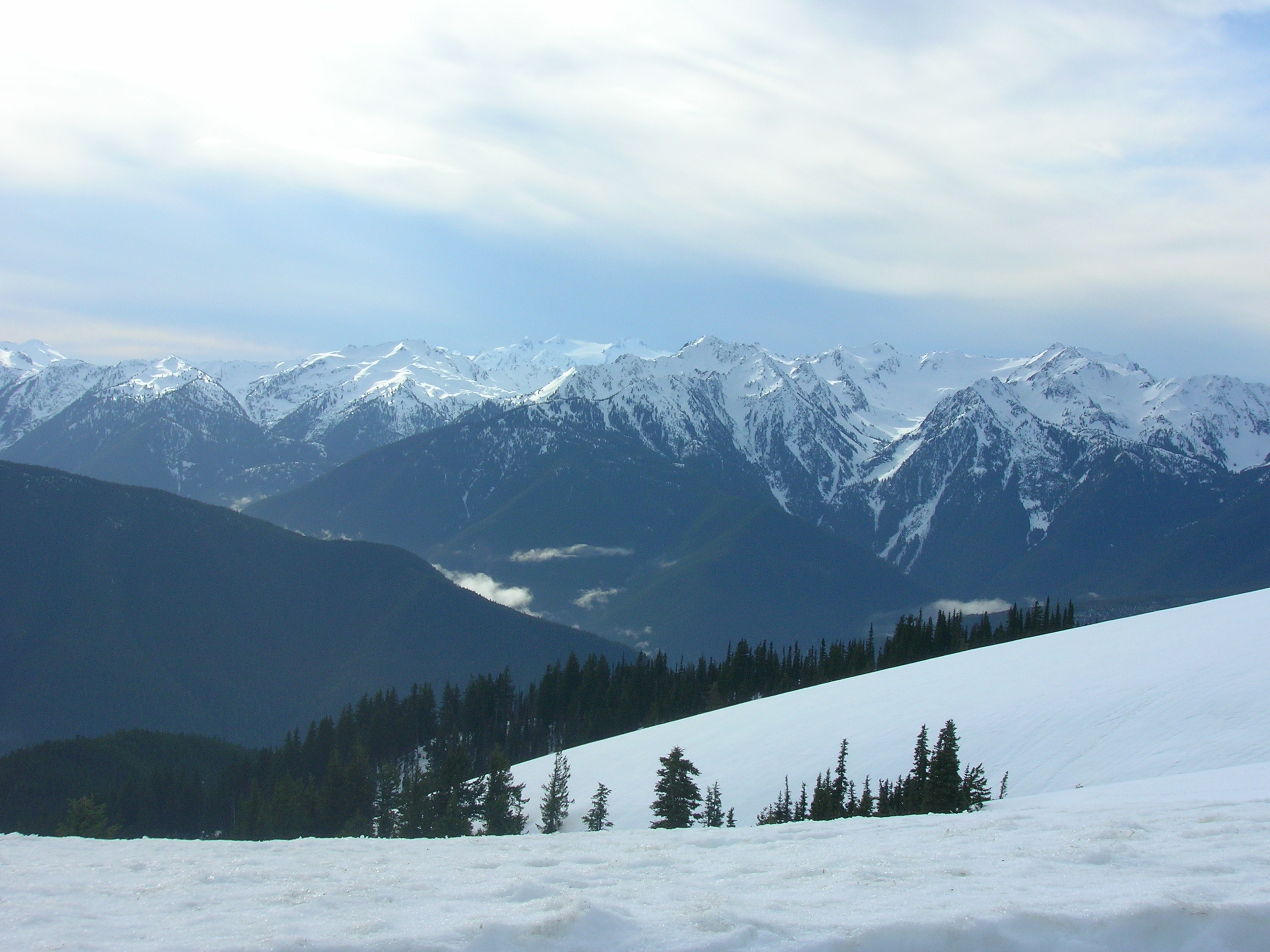 Image result for olympic mountains