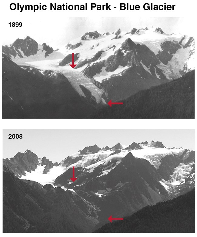 Blue Glacier 1899-2008 pair