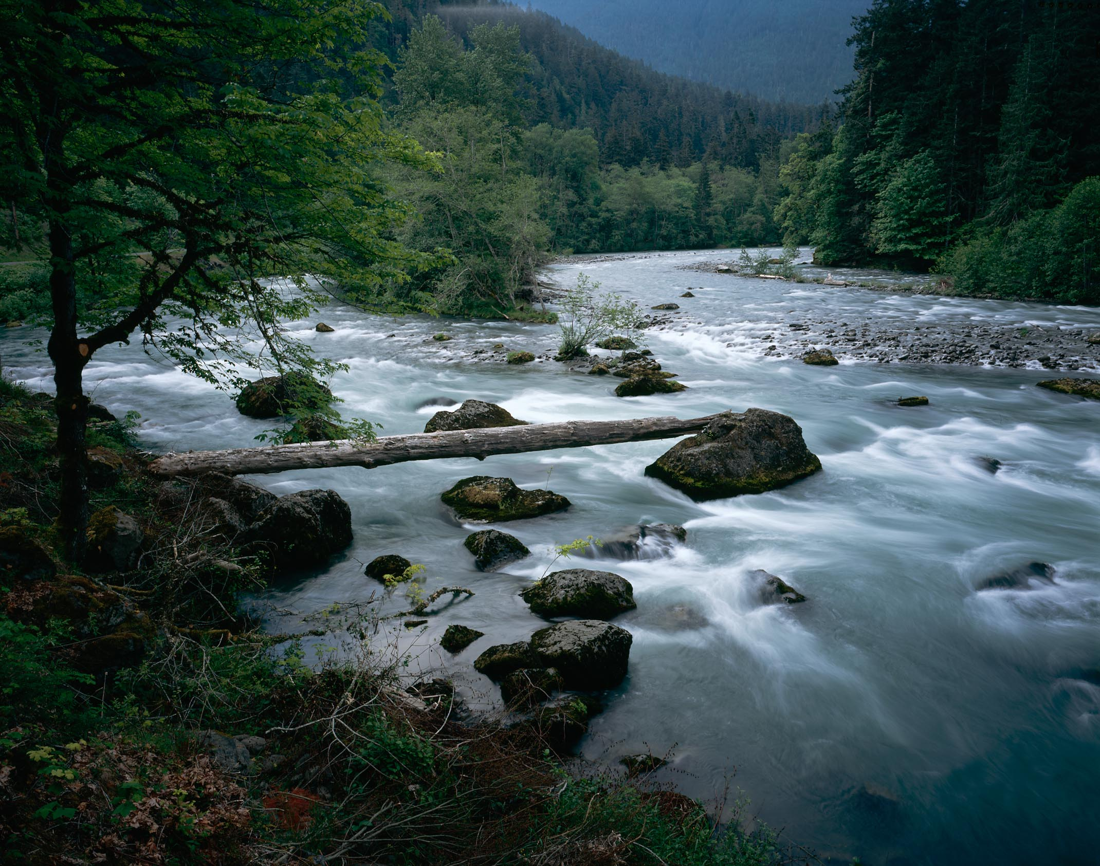 Frequently Asked Questions - Olympic National Park (U.S ...